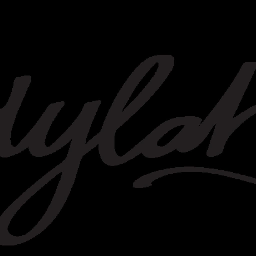 Ladylab_logo